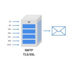LIMITED SMTP - LONG-TERM DOMAIN & TRUST